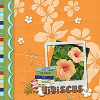 SNP_ohana_hibiscus_web.jpg