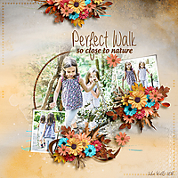 SSD-perfect-walk-10Nov.jpg