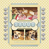 Sammy_Temp1gs.jpg