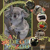 San-Diego-Zoo5WEB.jpg