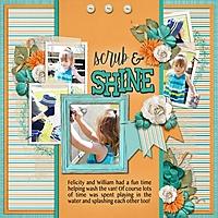 Scrub_Shine_med_-_1.jpg