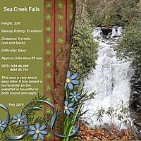 Sea_Creek_Falls_4_gallery.jpg