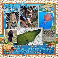 Sea_Life_Aquarium_MOA_July_2013_DFD_4OrMore1_copy.jpg
