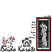Seido_Karate_Small.jpg