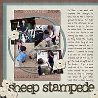 Sheep-Stampede-WEB.jpg