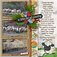 Sheep_Herding.jpg