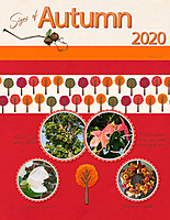 Signs-of-Autumn-2020.jpg