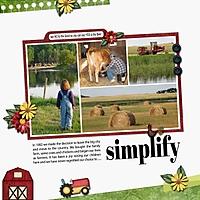 Simplify_med.jpg