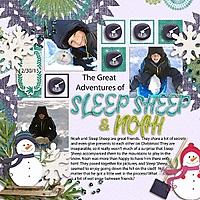 SleepSheep_sts_newhorizons_set1_rfw.jpg