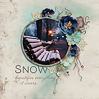 Snow-beautifies-everything-ND-011519.jpg