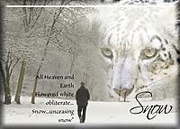 Snow29.jpg