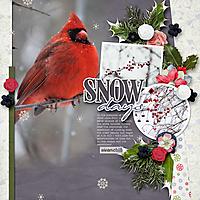 Snow_Days1.jpg