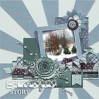 Snow_Story_Feb_13_2014_600x600.jpg
