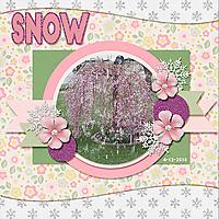 Snow_web2.jpg