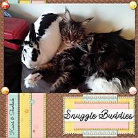 Snuggle_Buddies.jpg