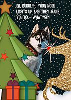 So_-Rudolph.jpg