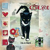 Sooty_Cat_copy.jpg
