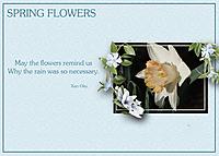 Spring-Flowers5.jpg