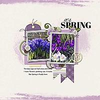 Spring-Flowers_web1.jpg