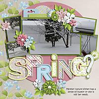 Spring76.jpg