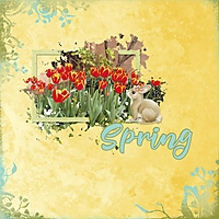 Spring_600_x_600_2.jpg