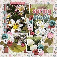 Spring_Beauty3.jpg