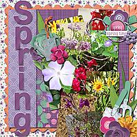 Spring_DTRD_May2020Template_rfw.jpg