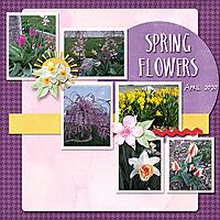 Spring_Flowers9.jpg