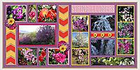 Spring_Flowers_web.jpg