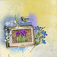 Springtime6.jpg