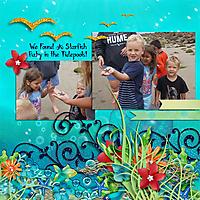 Starfish_in_the_Tidepools.jpg