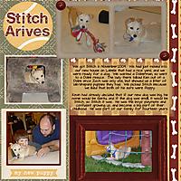 Stitch_comes_home_upload.jpg