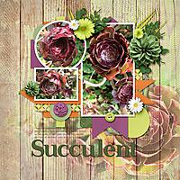 Suja-Succulent-600.jpg