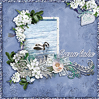 Swan-lake.jpg