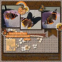 TB_Kit_Butterfly_Garden_Bundle-Temp_Life_Chronicled_My_Travel_2R_1.jpg