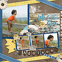 TB_Sea_and_Me_Kit-_Template_Ribbons_and_paper_Vol_16_4_1.jpg