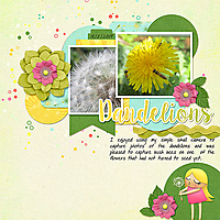 TLP_Photo_dt_SecondChances4_Dandelions.jpg