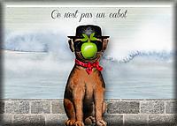 The-Magritte-Mutt.jpg
