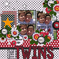 The-Twins.jpg