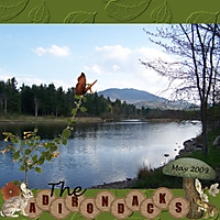 The_Adirondacks_Small.jpg