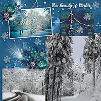 The_Beauty_Of_Winter1.jpg