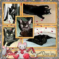The_Cherry_On_Top_-_Fabulous_Photos_Temp_3_kitty_love-600.jpg