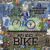 The_New_Bike_med_-_1.jpg