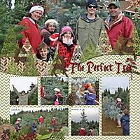 The_Perfect_Tree_450x450_.jpg
