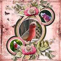 Threelittlebirds-Angeliques.jpg