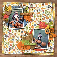 Tiny_Pumpkins.jpg