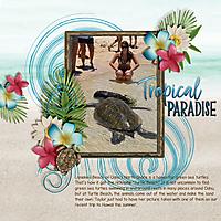 Tropical-Paradise1.jpg