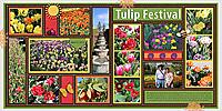 Tulip_Festival_2.jpg