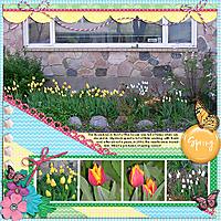 Tulips_in_2006_small.jpg