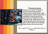 Turning-Autumn.jpg